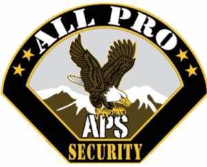 All Pro Security logo and link